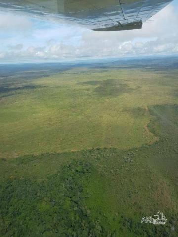 Fazenda à venda, 690000000 m² por r$ 172.500.000,00 - centro - fernando falcão/ma
