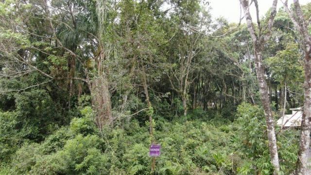 Terreno à venda, 300 m² por r$ 46.000,00 - brandalize - itapoá/sc