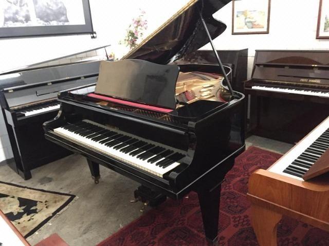 d1b78fa75c0c0 Promoções Magnificas Essa Semana D Pianos Caudas No ShowRoom CasaDePianos  N Percam