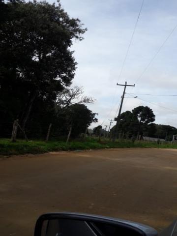 Chácara à venda em Areia branca dos nogueira, Mandirituba cod:CH00013 - Foto 6