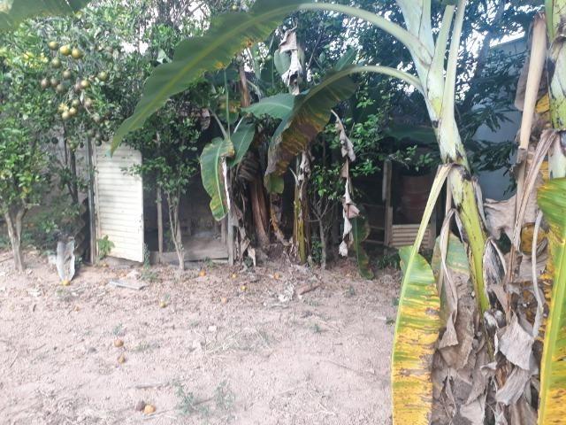 Chácara com 500m² em Barreto - Nova Serrana - Foto 14