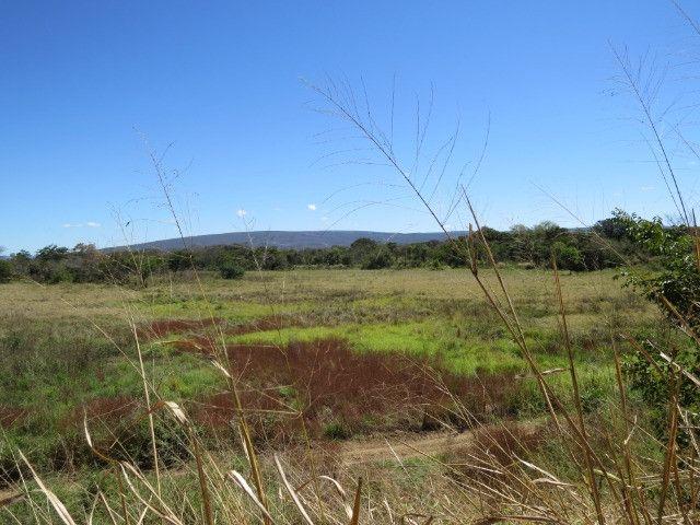 Fazenda com área de 63 há, as margens do Rio das velhas em Corinto - Foto 16