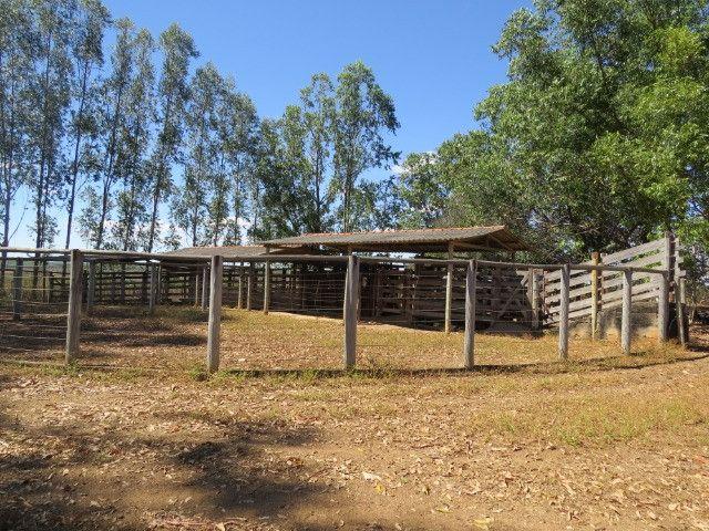 Fazenda com área de 600 há, localizada à 20 km/Corinto - Foto 10