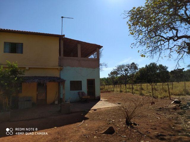 Fazenda 39 hectares - Foto 9