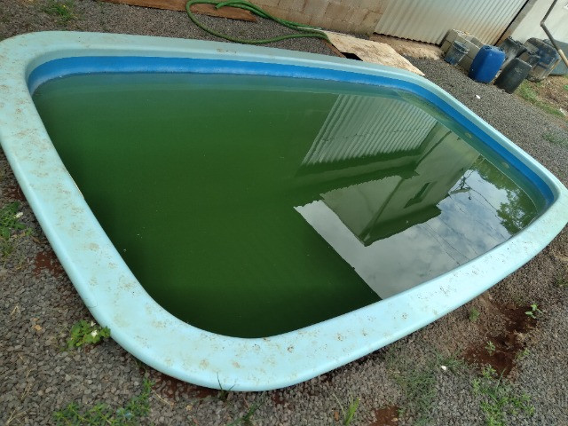 Vendo piscina de barbada - Foto 4