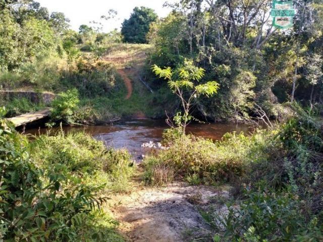 Maraú. Fazenda de 710 Hectares com diversas atividades de produção e rica em água - Foto 16