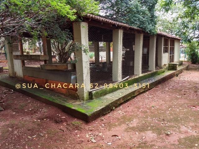 25 alqueires Porteira Fechada Goianira- GO - Foto 20