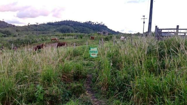 Itagibá. Fazenda pecuária de 375 Hectares com toda infraestrutura. - Foto 12