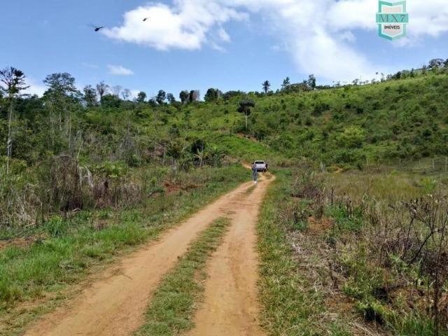 Maraú. Fazenda de 710 Hectares com diversas atividades de produção e rica em água - Foto 4
