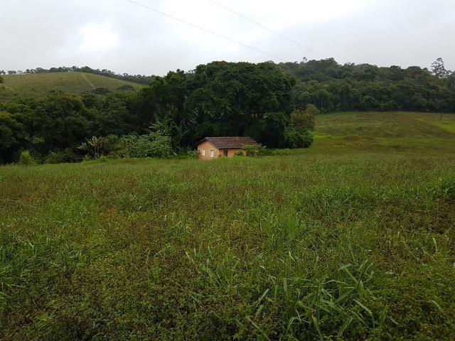 193B/Ótima fazenda de 70 ha bem localizada com ótima altitude e topografia