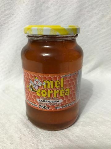 Mel Várias Floradas - Embalagem 750g (100% Puro) - Foto 4