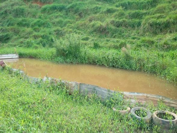 Sítio à venda em Córrego dos monos, Mesquita cod:559 - Foto 4
