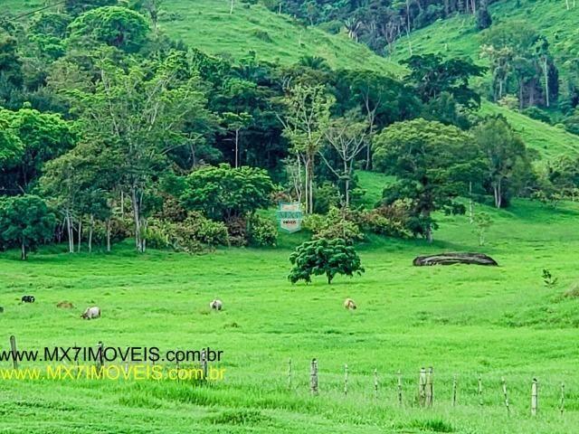 Itaju do Colônia. Linda Fazenda pecuária de 375 Hectares - Foto 8
