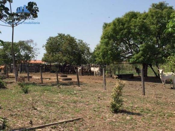 Sítio/haras em cuiabá com 50 baias para cavalos, 600 mts de rodovia - Foto 19