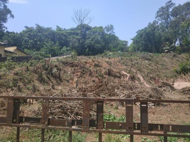 Terreno à venda em Vila santo antônio, Cotia cod:62415 - Foto 3