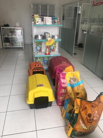 Vendo pet shop - Foto 5