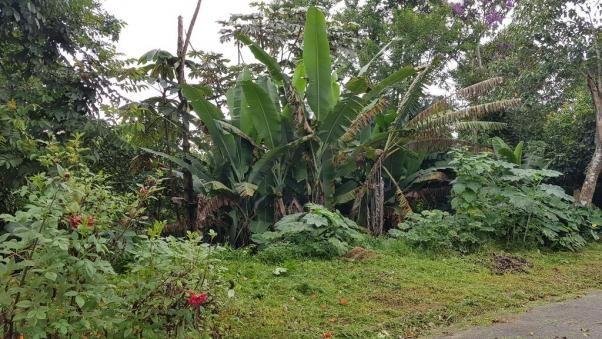 Terreno à venda em Jardim são jorge, Arujá cod:63335 - Foto 3