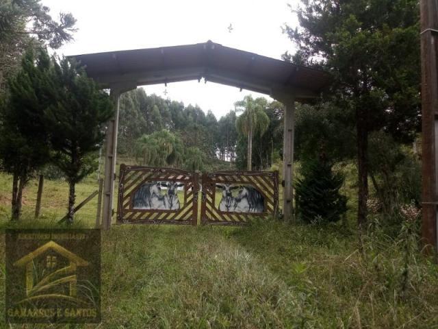 Aluga-se chácara com 18 alqueires com casa e estrutura para criação de gado - Foto 2