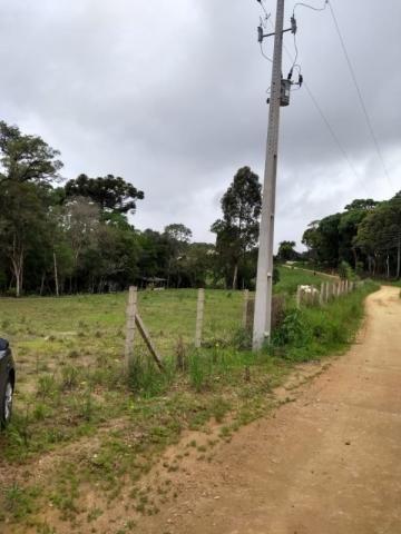 Chácara à venda em Rio do cacho, Contenda cod:CH00012 - Foto 7