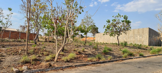 Terrenos no Parque Resid Tropical Ville (Cuiaba) Parte Alta e Área Verde - Foto 2