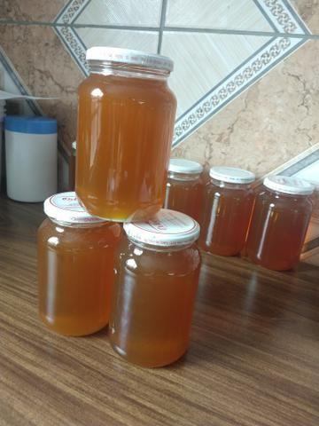 Vendo mel puro ótima qualidade - Foto 2