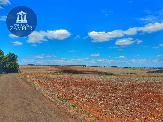 Sítio de  10,5 alqueires, ótima localização, em Iguaraçu, PR - Foto 4