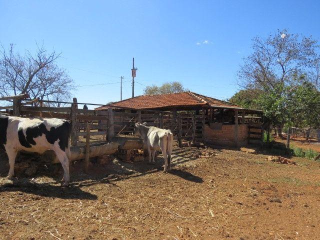 Fazenda em Corinto com área de 100 há, sede boa, curral, 70% formada - Foto 2