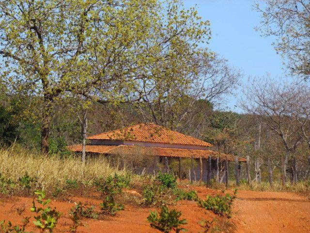 Fazenda em Corinto com área de 100 há, sede boa, curral, 70% formada - Foto 4