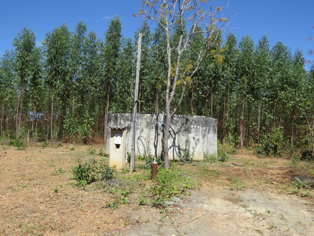 Fazenda com área de 600 há, localizada à 20 km/Corinto - Foto 20