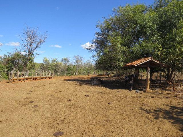 Fazenda em Corinto com área de 100 há, sede boa, curral, 70% formada - Foto 18
