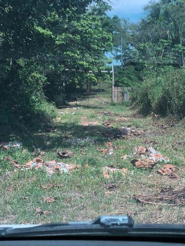 Vendendo terreno de 5 hectares em Parintins - Foto 6