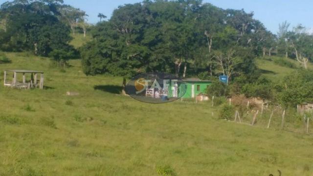 Sítio rural à venda, Agrisa, Cabo Frio - Foto 5