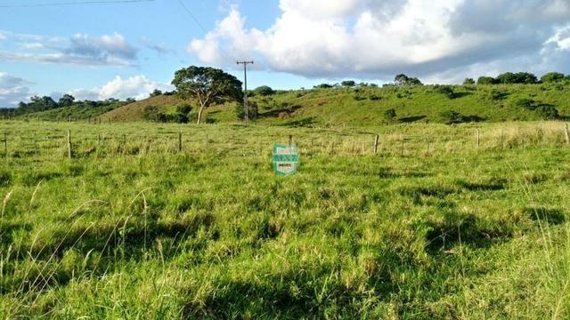 Itagibá. Fazenda pecuária de 375 Hectares com toda infraestrutura. - Foto 2