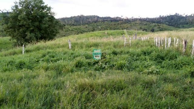 Itagibá. Fazenda pecuária de 375 Hectares com toda infraestrutura. - Foto 13