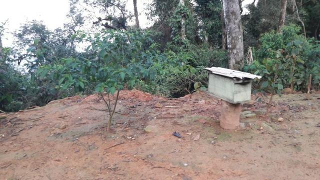 Chácara área rural porteira fechada - Foto 7