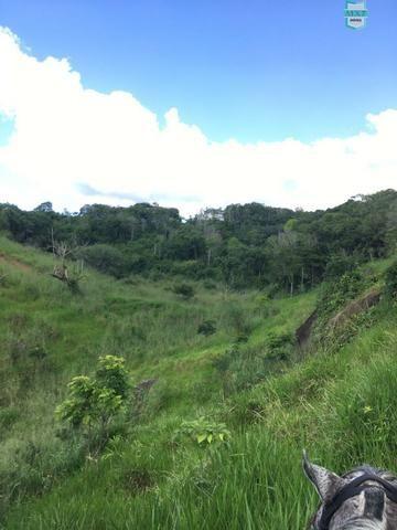Itaju do Colônia. Fazenda de 400 Hectares. para pecuária. - Foto 10