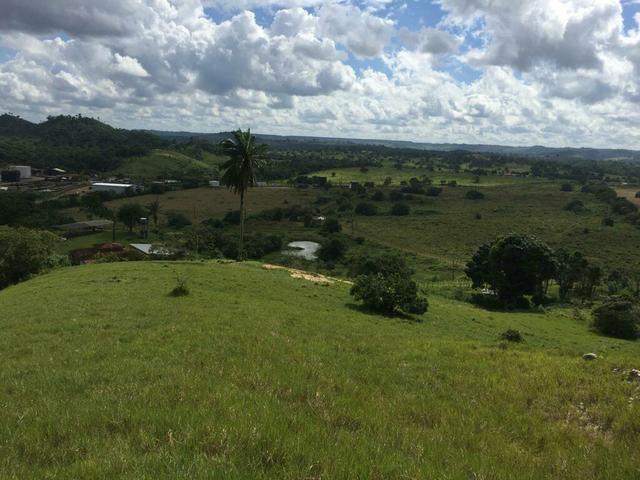 Fazenda na Cidade de Mata de São João - Foto 13