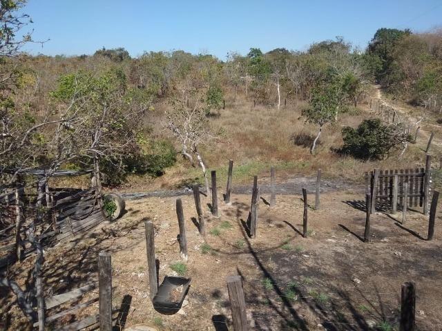 Chácara km 22 estrada da guia - Foto 14