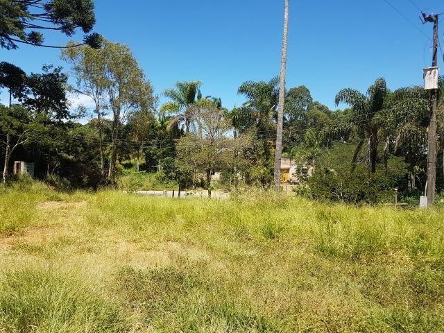 193B/Ótima fazenda de 70 ha bem localizada com ótima altitude e topografia - Foto 16