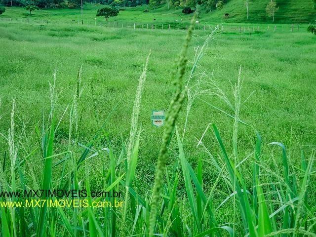 Itaju do Colônia. Linda Fazenda pecuária de 375 Hectares - Foto 20