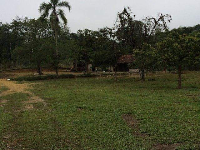 Chácara para alugar em Vila nova, Joinville cod:L58656 - Foto 15
