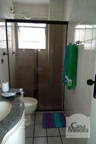 Apartamento à venda com 3 dormitórios em Padre eustáquio, Belo horizonte cod:256094 - Foto 14