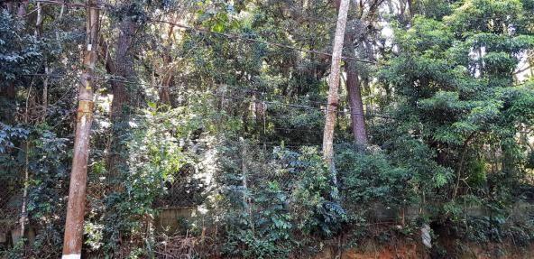 Loteamento/condomínio à venda em Embu colonial, Embu das artes cod:60724 - Foto 3