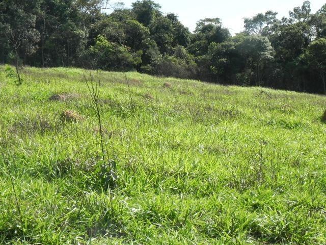 L.O1 escolha logo o seu ! terrenos em mairiporã - Foto 5