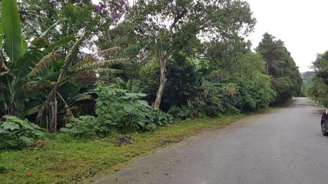 Terreno à venda em Jardim são jorge, Arujá cod:63335