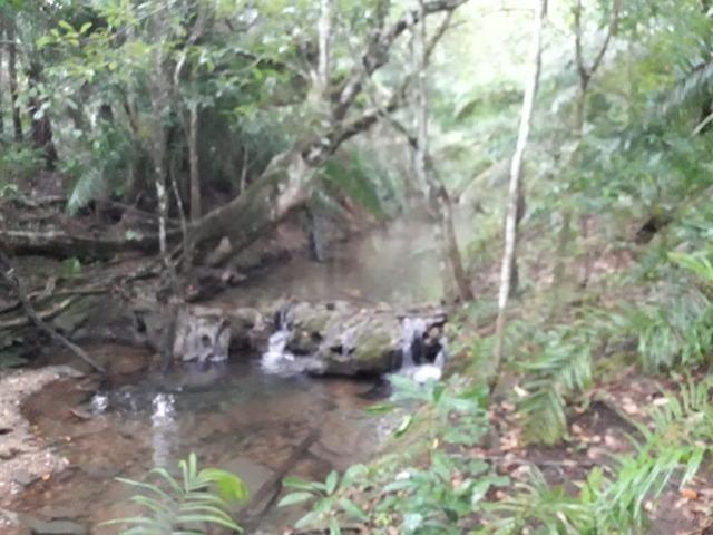 Linda chácara rica em água em Bodoquena - Foto 6