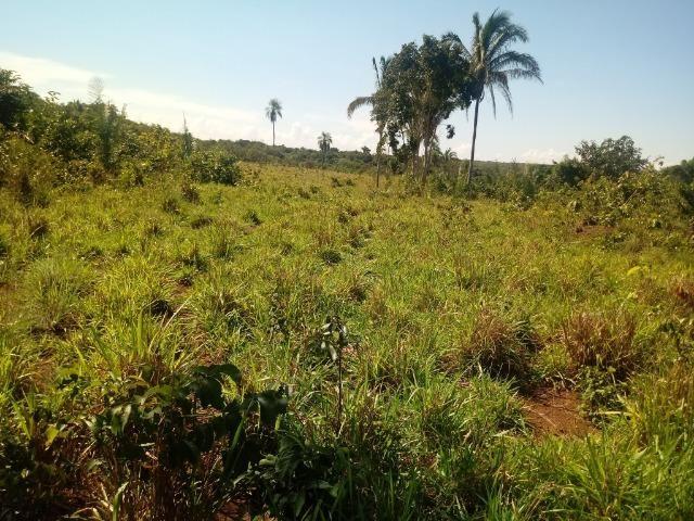 Chácara de 39 hectares em Acorizal ! - Foto 3