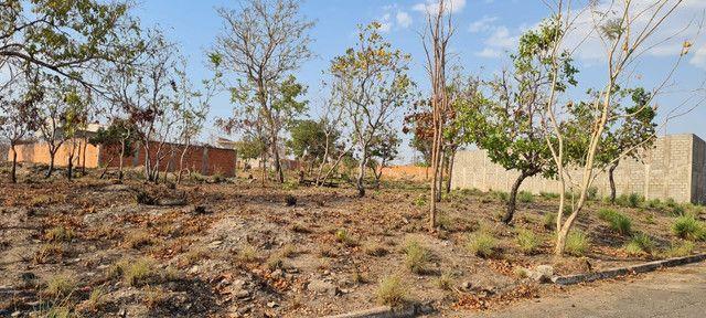 Terrenos no Parque Resid Tropical Ville (Cuiaba) Parte Alta e Área Verde