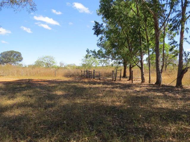 Fazenda com área de 600 há, localizada à 20 km/Corinto - Foto 7