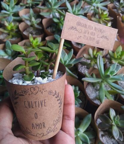 Lembrancinhas Botânicas - Foto 4